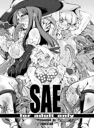 【ドラゴンズクラウン】ソーサレス・アマゾン・エルフが触手やゾンビたちに拘束されて好き放題レイプされちゃってるお【エロ漫画・エロ同人誌】