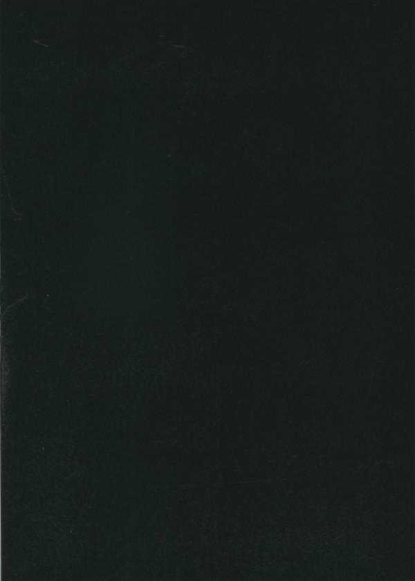 ri026