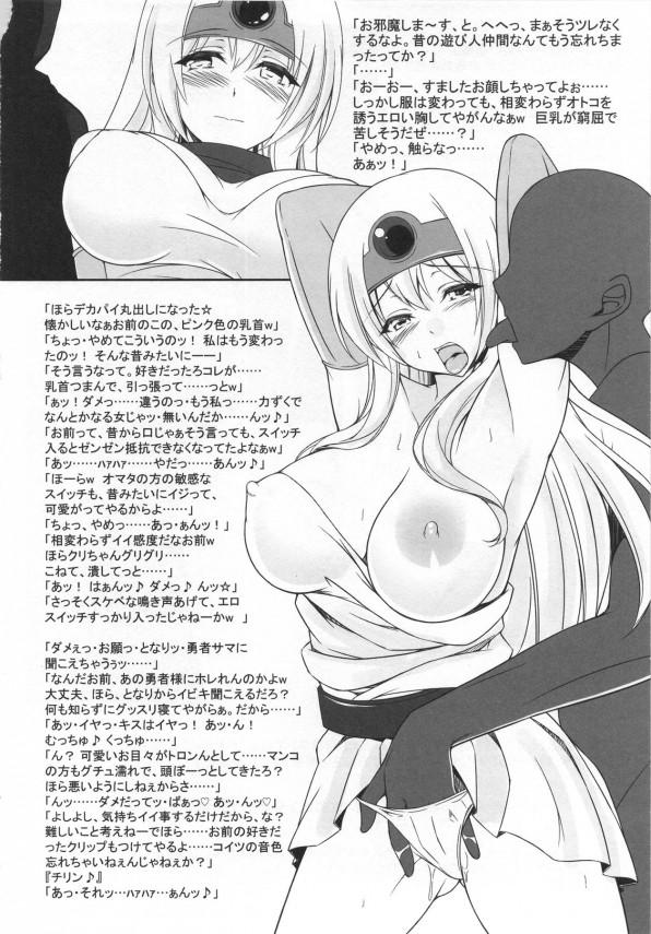 【DQ3 エロ漫画・エロ同人誌】変態勇者が女僧侶と女戦士を調教SEXしてるよ~wwwエロい格好させて子孫繁栄のため毎日中出しSEXで子づくりに励んでるww pn011