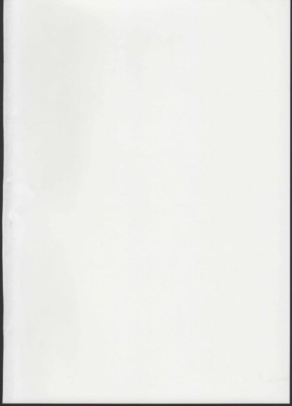 【東方Project】痴女未成熟貧乳映姫ちゃんが魂たちと乱交エッチしてちんこしゃぶったりセックス中出し顔射ぶっかけさせまくるよwwwwwwwww【エロ漫画・エロ同人誌】pn003