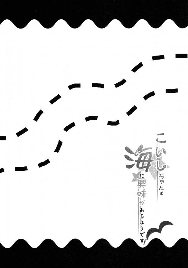 【東方 エロ同人誌】海でこいしちゃんがはしゃいでたらおっぱい見えたのでハメた【東方Project エロ漫画】 pn017