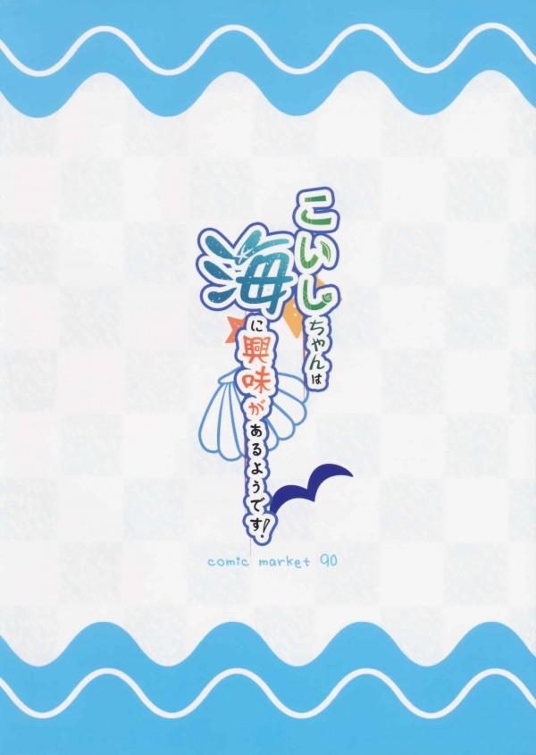 【東方 エロ同人誌】海でこいしちゃんがはしゃいでたらおっぱい見えたのでハメた【東方Project エロ漫画】 pn019