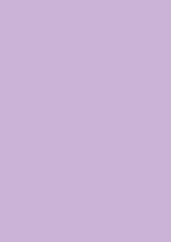 【艦これ】艦娘「天龍」の不祥事の責任を負わされて二人だけのヘンピな鎮守府に左遷されてしまった提督と「天龍」だったが提督がエッチな躾を「天龍」にすると徐々に開発されてきて…【エロ漫画・エロ同人】 (2)