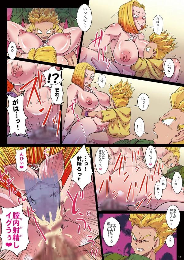 【ドラゴンボール】大人のトランクスと子供のトランクスと3Pするブルマwww【エロ同人誌・エロ漫画】 (14)