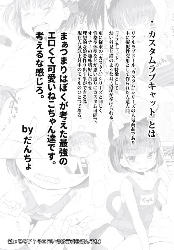 ロリっ子のケモミミが性欲処理をするwwwいい時代www【エロ漫画・エロ同人】 (3)