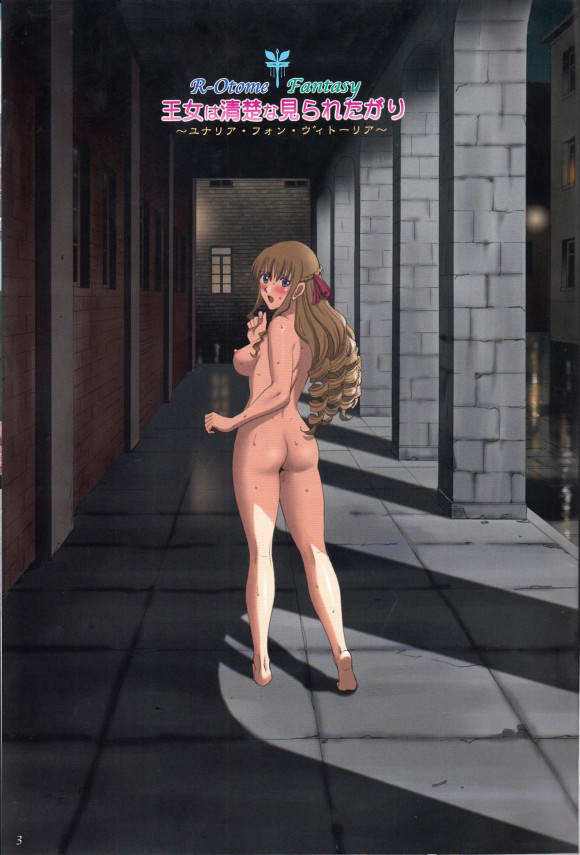 父親の後を継いで国王になった姫だが人前で裸になって興奮する性癖が抑えられないで夜な夜な全裸にコートをだけを羽織った格好で街を徘徊してしまい…【エロ漫画・エロ同人】 (2)