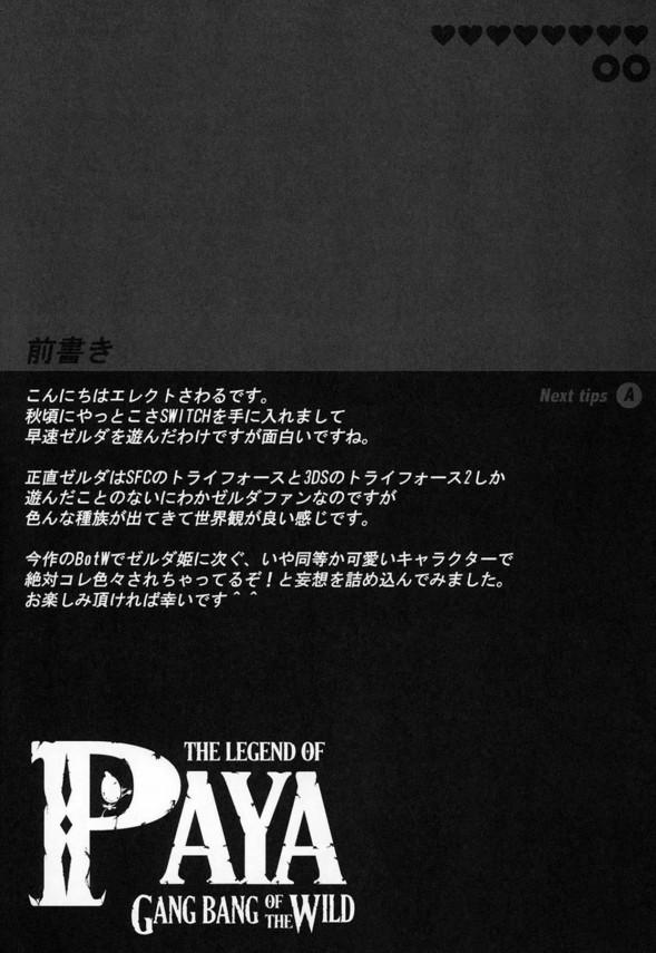 【ゼルダの伝説】パーヤちゃんは男たちに輪姦されるのが好きなド変態www【エロ漫画・エロ同人】 (3)