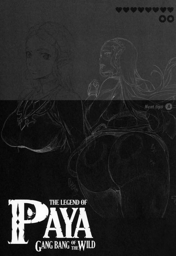 【ゼルダの伝説】パーヤちゃんは男たちに輪姦されるのが好きなド変態www【エロ漫画・エロ同人】 (24)