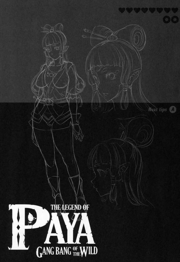 【ゼルダの伝説】パーヤちゃんは男たちに輪姦されるのが好きなド変態www【エロ漫画・エロ同人】 (23)