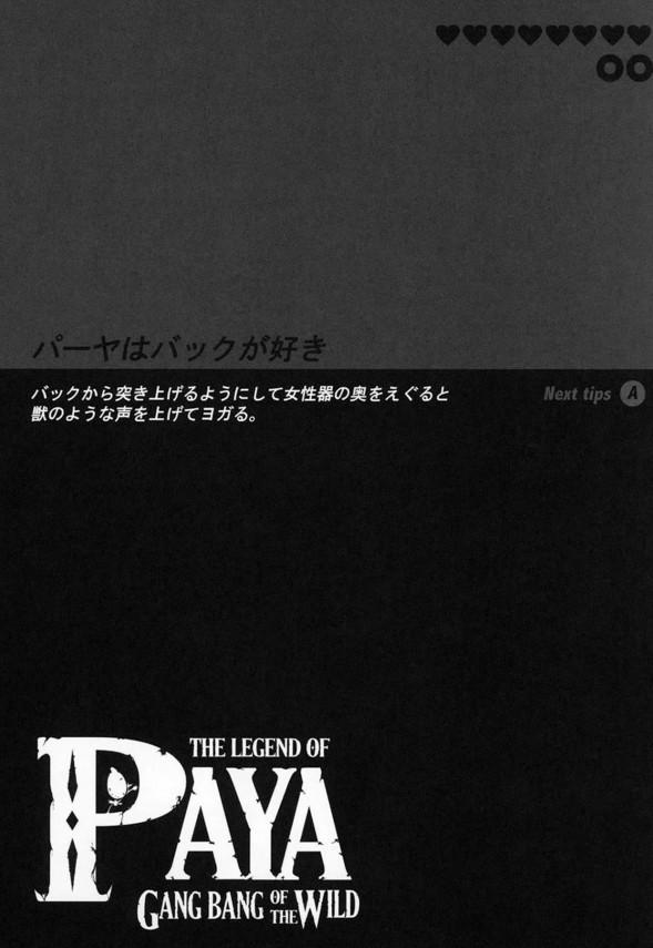 【ゼルダの伝説】パーヤちゃんは男たちに輪姦されるのが好きなド変態www【エロ漫画・エロ同人】 (18)