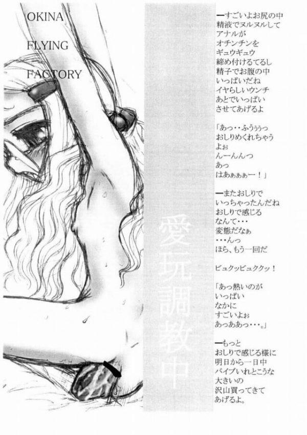 【エロ漫画・エロ同人誌】無口な貧乳幼女をもっと気持ちよくさせるために薬を注入してアナルファック!!【Okina Flying Factory】(12)