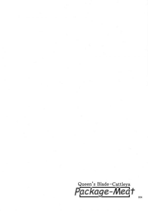 【エロ同人 クイーンズブレイド】今夜も金持ちの老人の夜の相手をしに来たカトレアだけど、元気がない老人。老人の息子が後ろからおまんこを舐め回して挿入する。【しあわせプリン堂 エロ漫画】 (3)