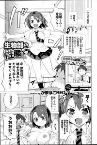 【エロ漫画】JKの吉崎先輩は制服を脱ぎ巨乳を出して片桐くんの肉棒をパイズリしながらフェラをしてぶっかけられる。【無料 エロ同人】